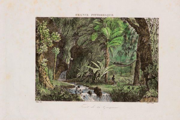 Antique etching of tropical landscape
